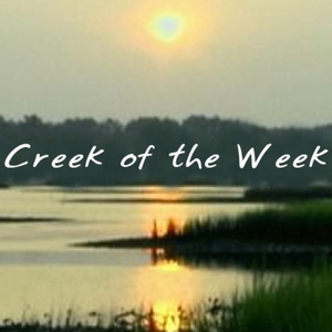 Creek of the Week: Dawson Schitt's by Creek of the Week: Dawson Schitt's