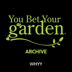 You Bet Your Garden by WHYY
