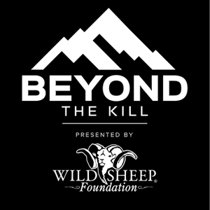 Beyond the Kill by Strider Holdings Inc.