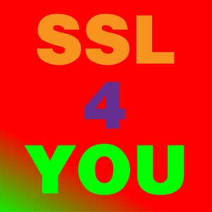 SSL4YOU Spanish as a Second Language by SSL4YOU