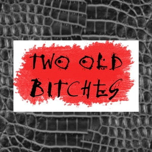 Two Old Bitches: Stories from Women who Reimagine, Reinvent and Rebel by Idelisse Malavé and Joanne Sandler