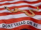 Tenth Amendment Center: Constitutional Conversation by Tenth Amendment Center