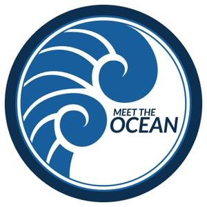 Meet the Ocean by Paul North