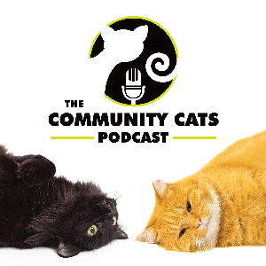 The Community Cats Podcast by The Community Cats Podcast