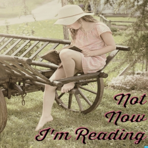 Not Now, I'm Reading by The Sisterhood of the Traveling Paperbacks