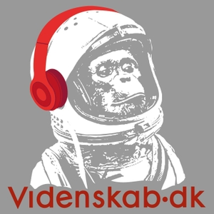 Videnskab.dk Podcast by Videnskab.dk