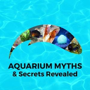 Aquarium Myths and Secrets Revealed by The Masked Aquarist