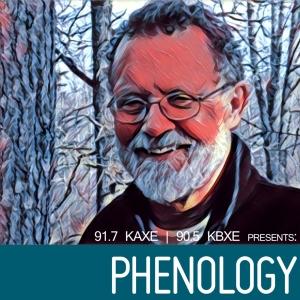 Northern Community Radio presents Phenology by John Latimer
