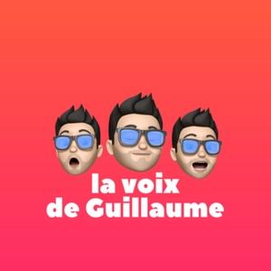 La voix de Guillaume Vendé by Guillaume Vendé