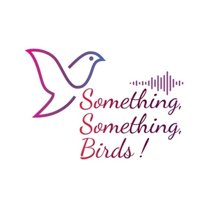 Something, Something Birds! (Music Trivia for the Audiophile!) by Lee DiGeorge