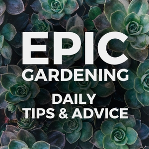 Epic Gardening: Daily Growing Tips and Advice by Kevin Espiritu | Urban Gardener, Hydroponics Enthusiast, Plant Lover