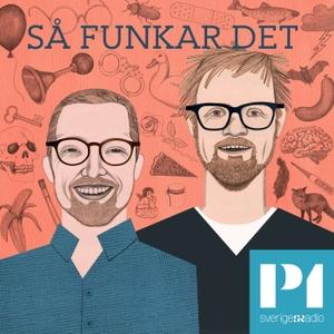 Så funkar det by Sveriges Radio