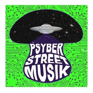 Psyber Street Musik by Shane Klein