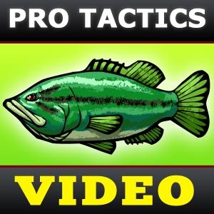 Bass Fishing Tactics Videos [BassFishin.Com] by BassFishin.Com