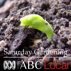 Roots and Shoots by ABC Radio