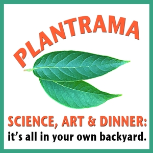 Plantrama - plants, landscapes, & bringing nature indoors by Ellen Zachos and C.L. Fornari