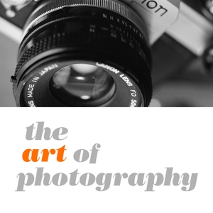 The Art of Photography by Ted Forbes