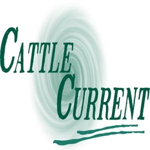 Cattle Current Market Update with Wes Ishmael by Wes Ishmael: cattle business analyst and journalist