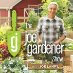 The joe gardener Show - Organic Gardening - Vegetable Gardening - Expert Garden Advice From Joe Lamp'l by Joe Lamp'l