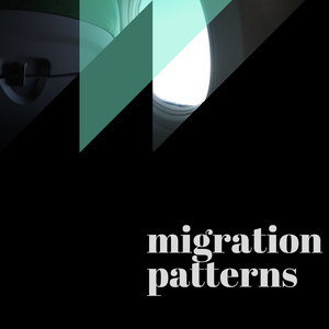 Migration Patterns by Meredith Bratland