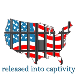 Released Into Captivity: Hope After the Cage |Prison|Parole|Hope|Change|Freedom|Crime|Justice by Daniel Herron