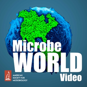 MicrobeWorld Video (audio only) by American Society for Microbiology