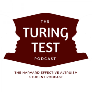 The Turing Test by Holly Elmore & Ales Flidr