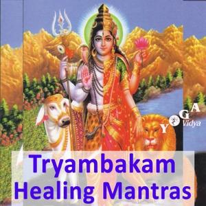 Om Tryambakam Healing Mantra by Sukadev Bretz - Joy and Peace through Mantra