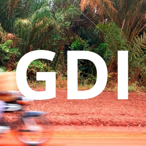 Global Development Institute podcast by Global Development Institute