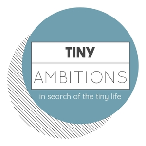 Tiny Bites: Conversations About Living A More Intentional Life by Britt