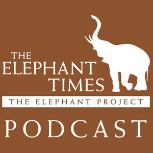 The Elephant Times by The Elephant Project - M. Dane Waters