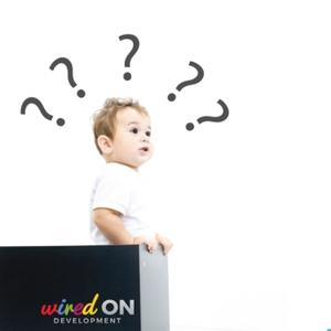 wiredON Development Interviews by wiredON Development