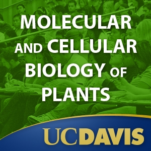 Molecular and Cellular Biology of Plants, Spring 2008