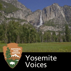 Yosemite Voices by None