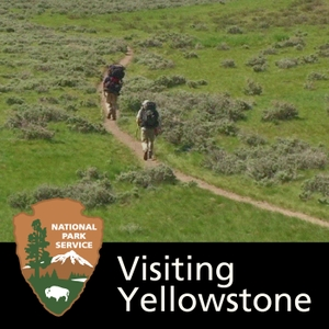 Visiting Yellowstone by None