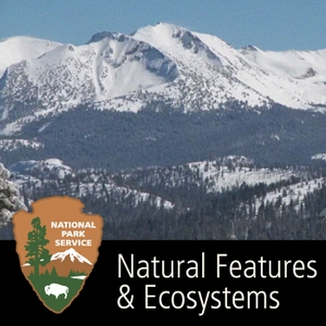 Natural Features & Ecosystems by None