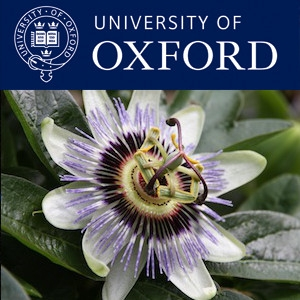Biology - Organisms Lectures by Oxford University