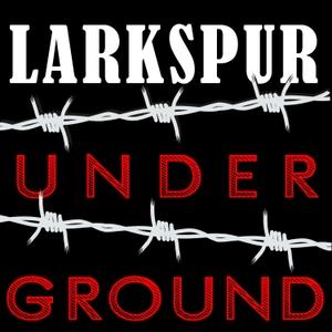 Larkspur Underground by Plainview Public Radio
