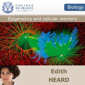 Epigenetics and cellular memory by Edith Heard (EN)
