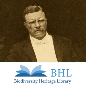 Theodore Roosevelt Collection by http://www.biodiversitylibrary.org/