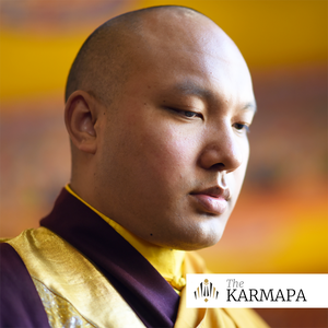 Selected Talks on Buddhism and Meditation by the Karmapa by Kagyu Office