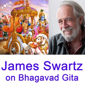 James Swartz  - Vedanta Talks on the Bhagavad Gita by James Swartz