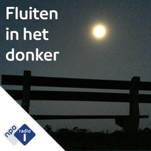 Hoorspel : Fluiten in het donker by NPO Radio 1