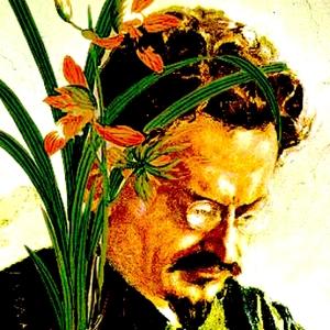 Trotsky & the Wild Orchids by Ray Haberski, Andrew Hartman, Daniel Rinn