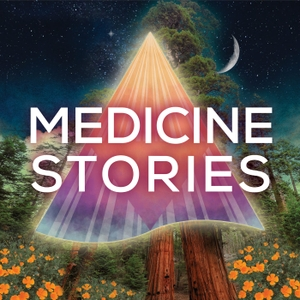 Medicine Stories by Amber Magnolia Hill