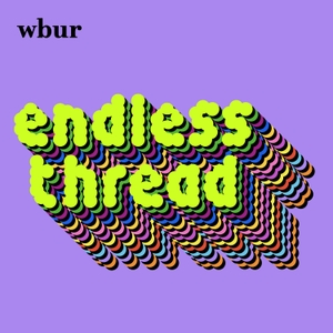 Endless Thread by WBUR and Reddit