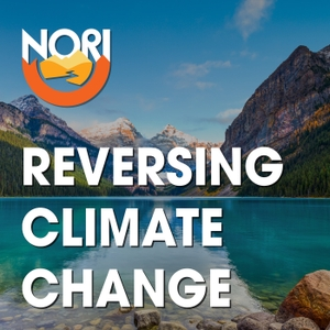 Reversing Climate Change by Nori