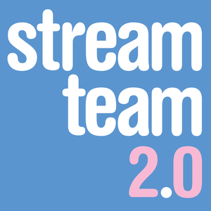 Stream Team 2.0 by Frederik Dirks Gottlieb og Kasper Lundberg