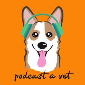 Podcast A Vet: Stories, Support & Community From Leaders In The Veterinary Field by Dr. John Arnold, DVM