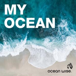Ocean.org by Ocean Wise